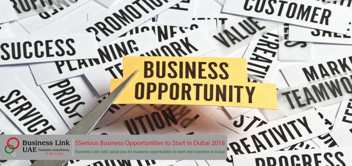 Business Opportunities to Start in Dubai